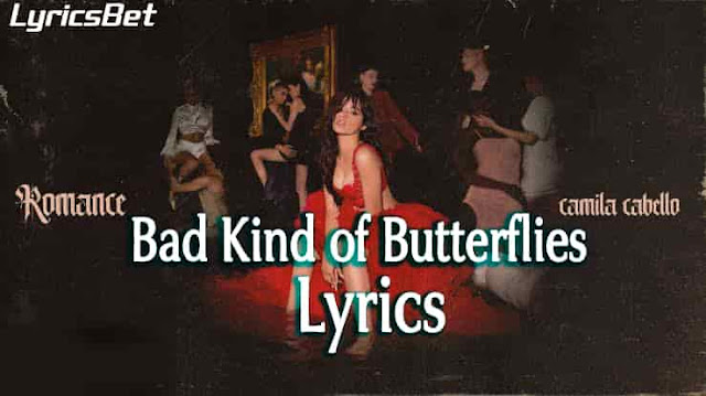 Bad Kind of Butterflies Lyrics
