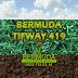 BERMUDA TIFWAY 419 RULO ÇİM