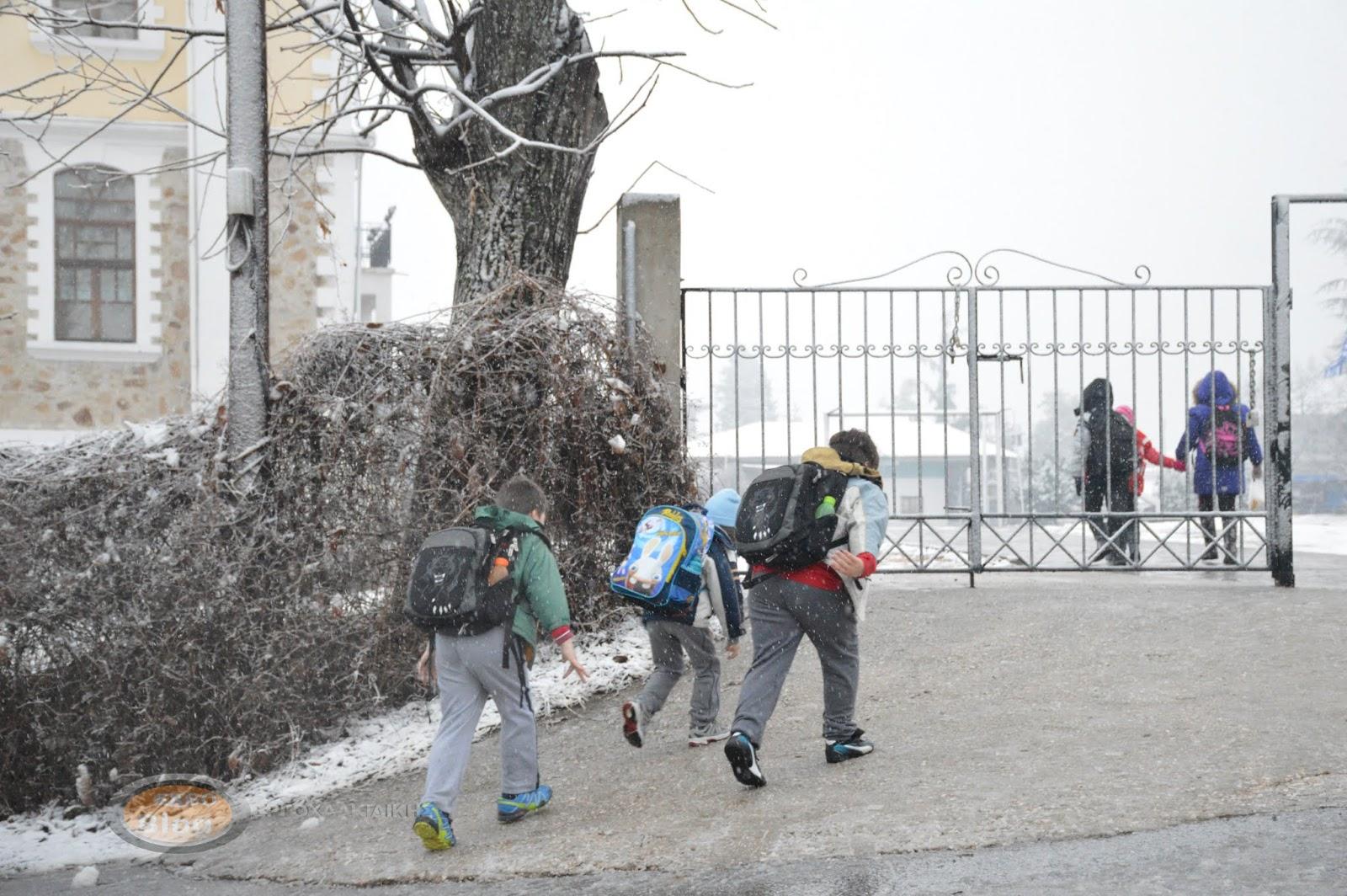 Αύριο Παρασκευή 7 Φεβρουαρίου, όλα τα σχολεία του Δήμου Αριστοτέλη θα λειτουργήσουν κανονικά.