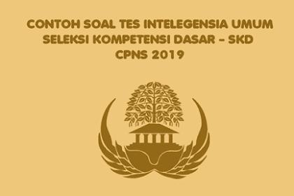 Contoh Soal Tes Intelegensia Umum - TIU CPNS 2019