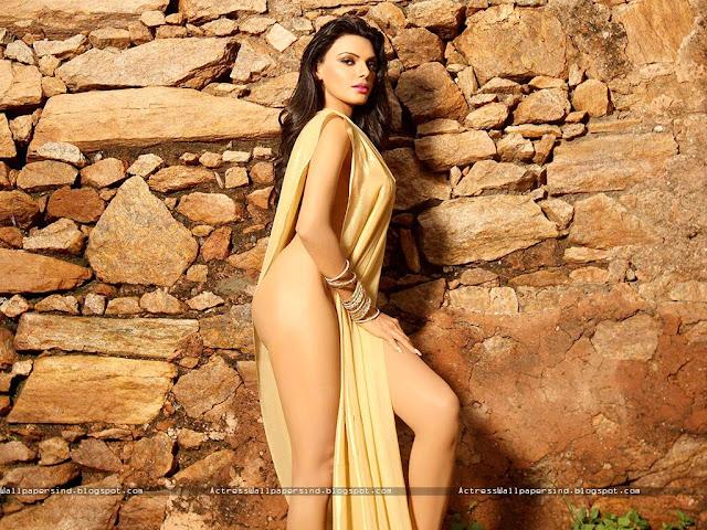 Sherlyn Chopra hot sex