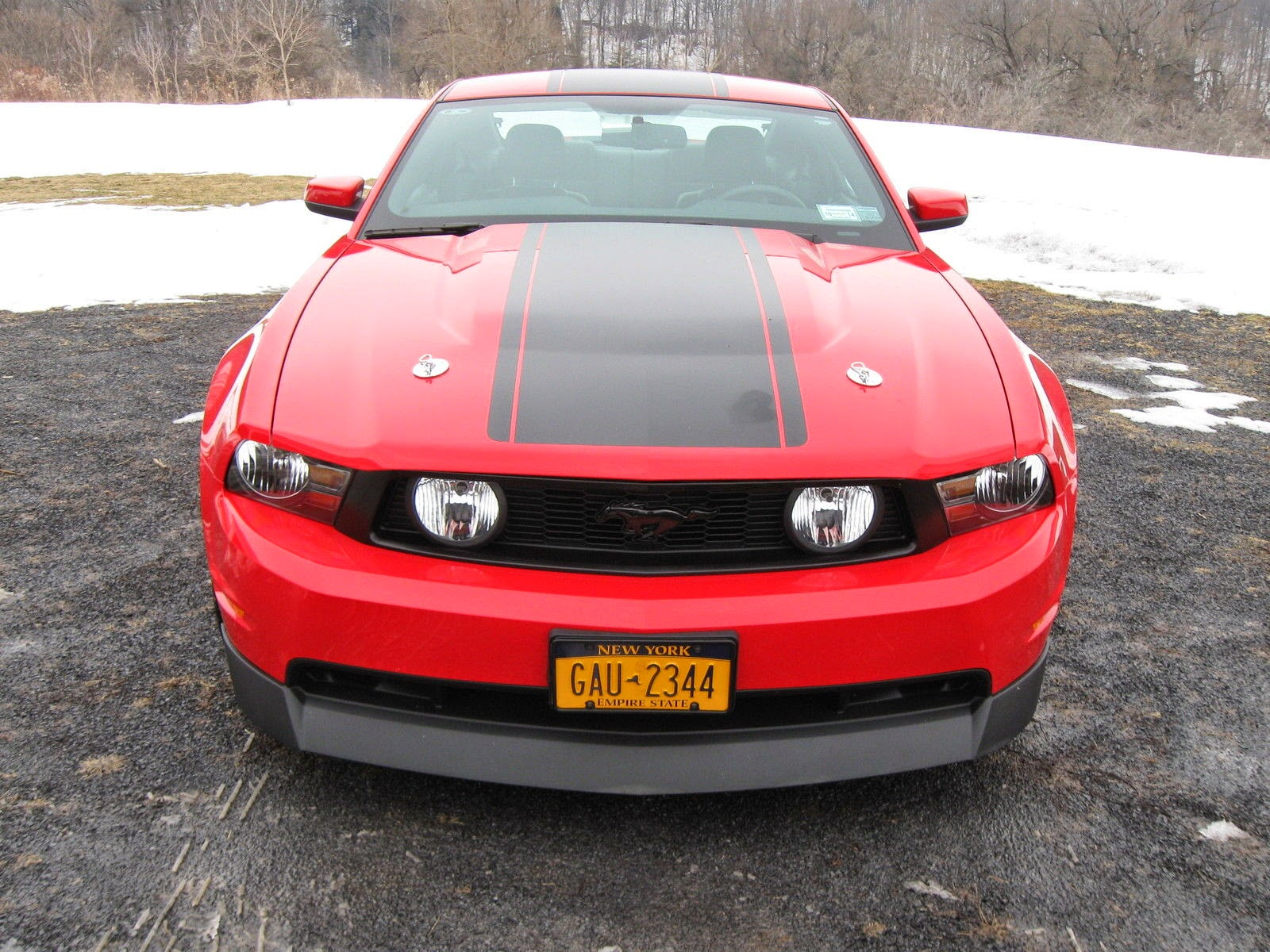 2010 ford mustang gt premium for sale american muscle cars