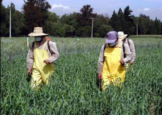 uso de herbicidas