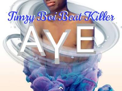 DOWNLOAD MUSIC: Timzy Boi Beat Killer - Aye