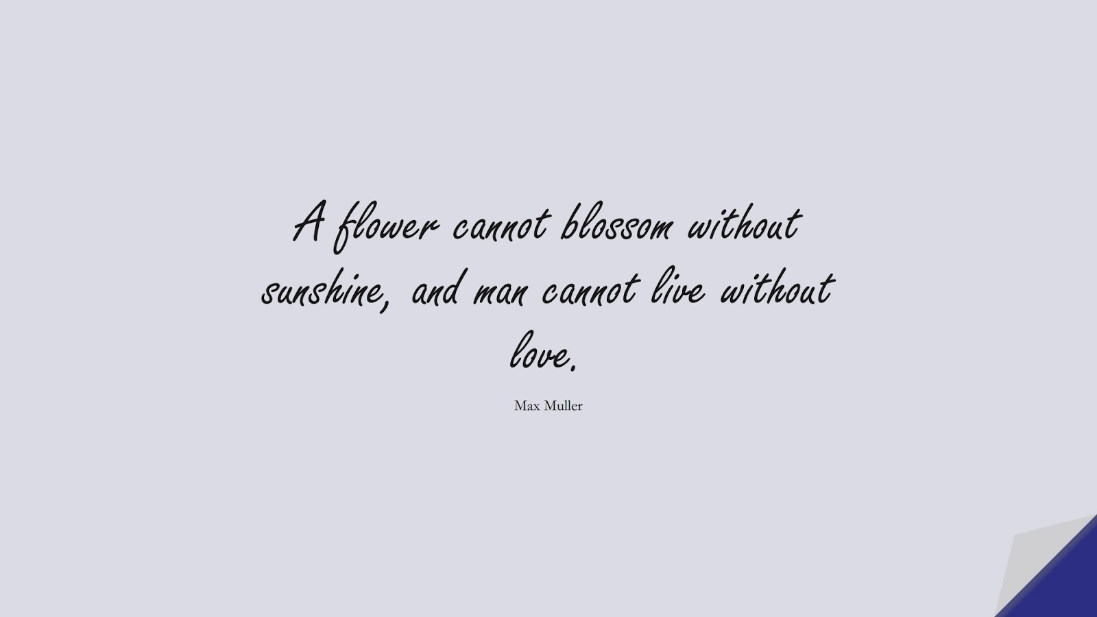 A flower cannot blossom without sunshine, and man cannot live without love. (Max Muller);  #LoveQuotes
