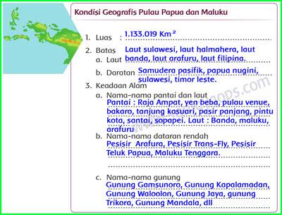 Kondisi-Geografis-Pulau-papua-dan-maluku-Berdasarkan-Peta