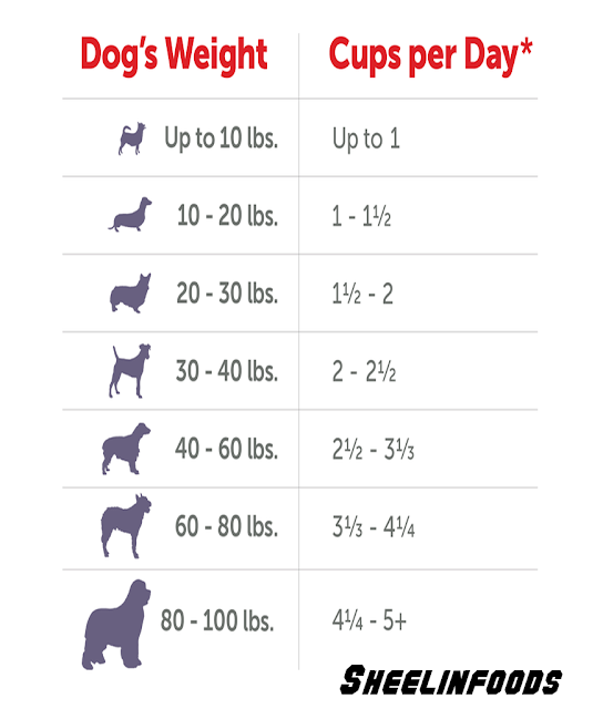 Dog's Weight and how much Cups per Day