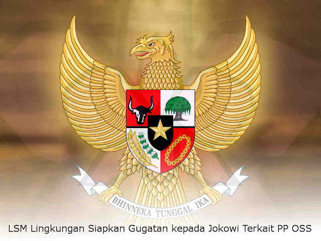 LSM Lingkungan Siapkan Gugatan kepada Jokowi Terkait PP OSS
