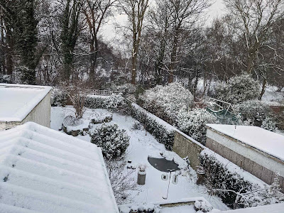 Feb 2021 snow in the garden from the upstairs window