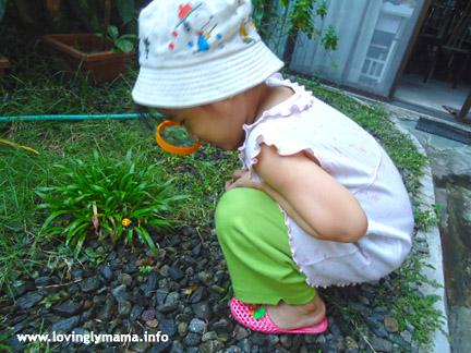 bug detective - outdoor activity for kids