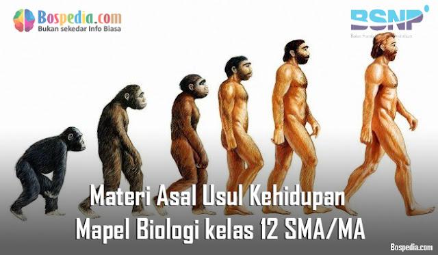 Materi Asal Usul Kehidupan Mapel Biologi kelas 12 SMA/MA