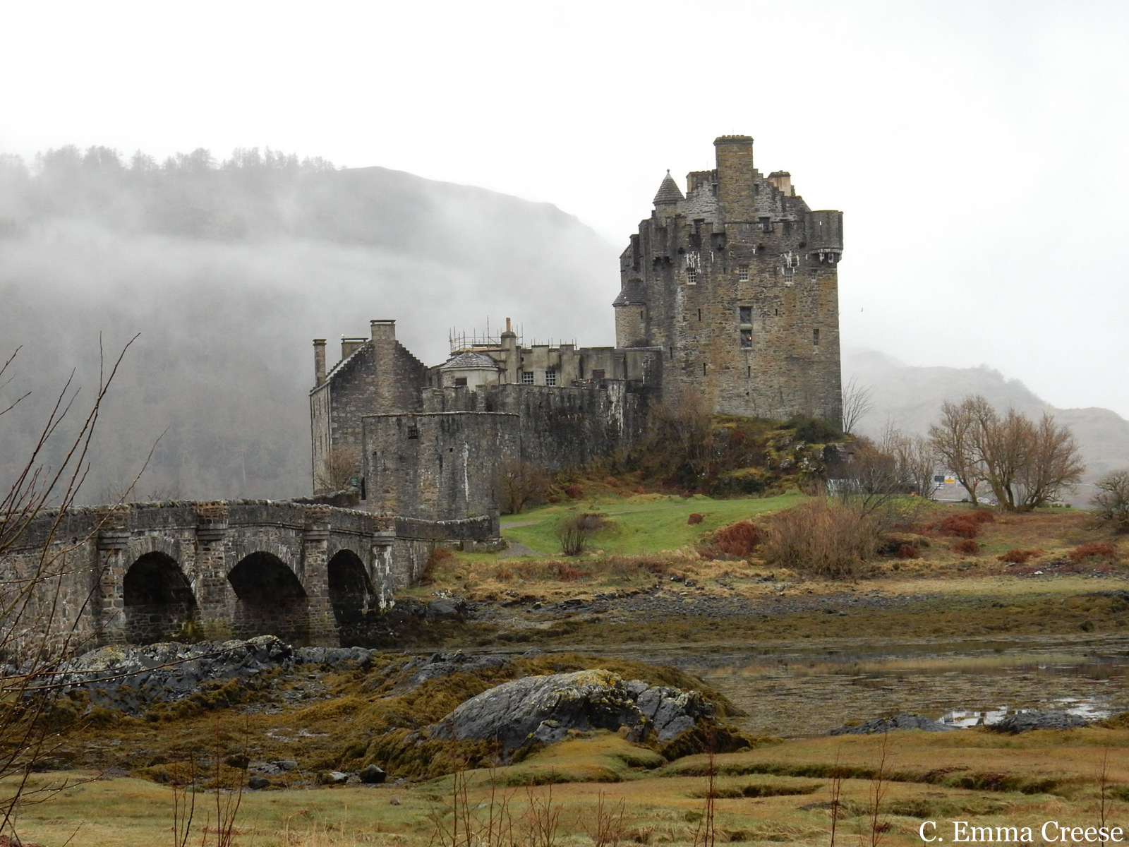 Cute Kiwi Wallpaper Where To Go In Scotland The Best Road Trip Ever