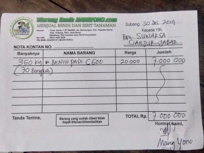 Nota Kontan pembelian benih  SUWARSA Cianjur, Jabar.  (Dibayar KONTAN)