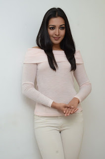 Actress Catherine Tresa Stills in White Dress at Sarrainodu Interview  0008.JPG