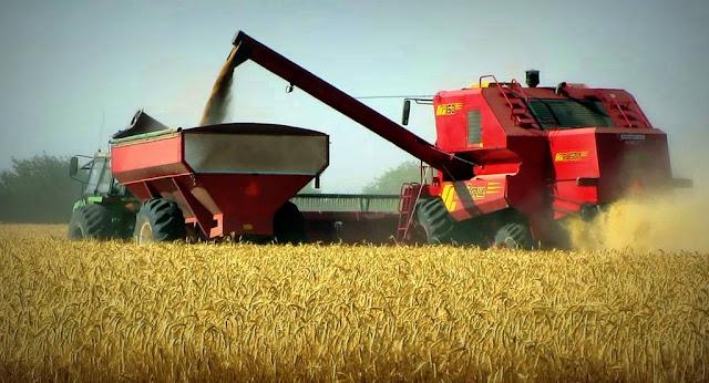 Según el Ministro de Agroindustria, la Cosecha de trigo 2016/17 de Argentina será superior a 17 millones de toneladas