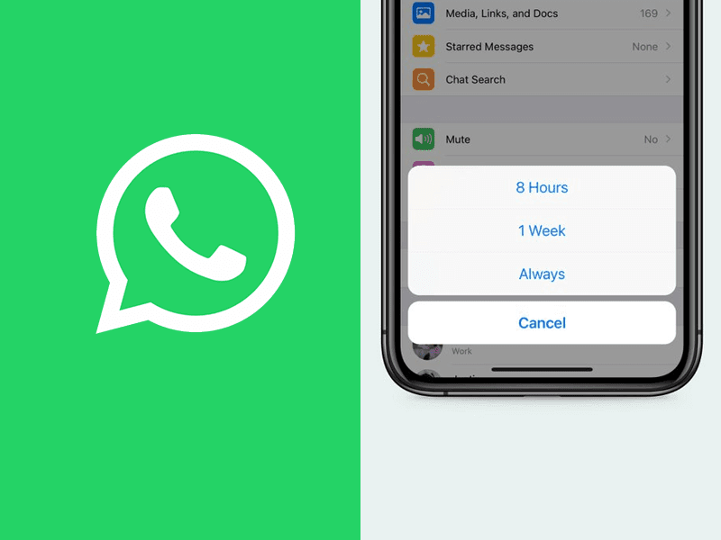 WhatsApp now lets you Mute a chat FOREVER!