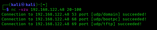 UDP port scanning using netcat