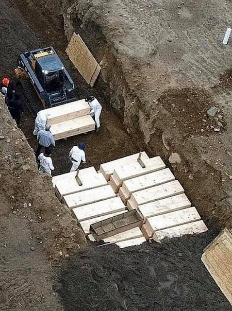 دفن جثث امريكا ضحايا كورونا