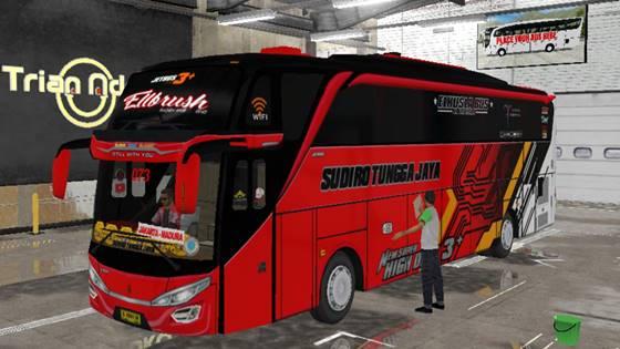 Livery Bussid STJ Ellbrush SHD Original
