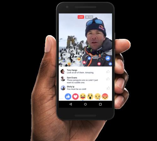 facebook live stream guide