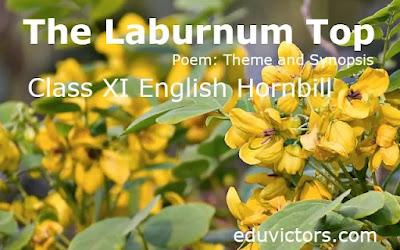 Class XI English Hornbill - Poem: The Laburnum Top (Theme and Synopsis)(#class11English)(#cbse2021)(#eduvictors)