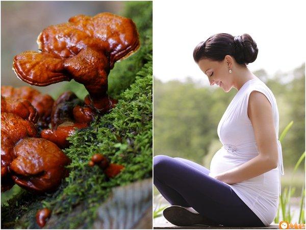 cách dùng nấm linh chi cho phụ nữ mang thai