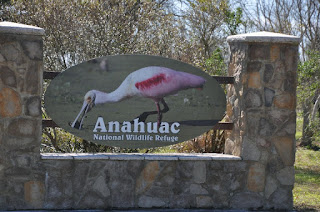 entry sign to Anahuac featuring picture of roseate spoonbill bird