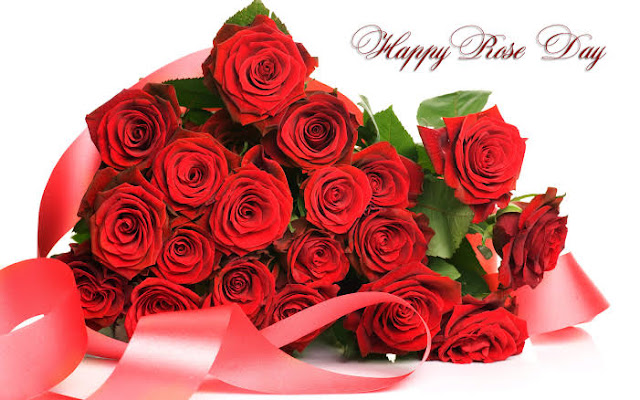 Red roses for rose day Valentine day Images