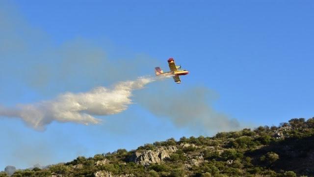 Φωτιά σε χωριό κοντά στους Δελφούς -  6 αεροσκάφη και 2 ελικόπτερα στη μάχη της κατάσβεσης