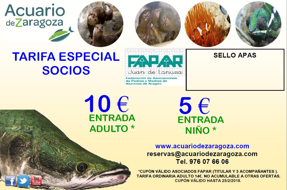 Ampa ies goya zaragoza acuario de zaragoza tarifas para for Precio entrada aquarium