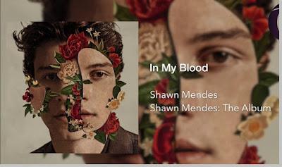 Shawn Mendes 2018 - sekarang - pustakapengetahuan.com