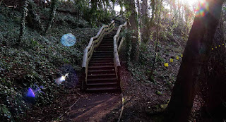 Dawsholm Park. River Kelvin Gorge. Maryhill Park. Outdoor Surprises.
