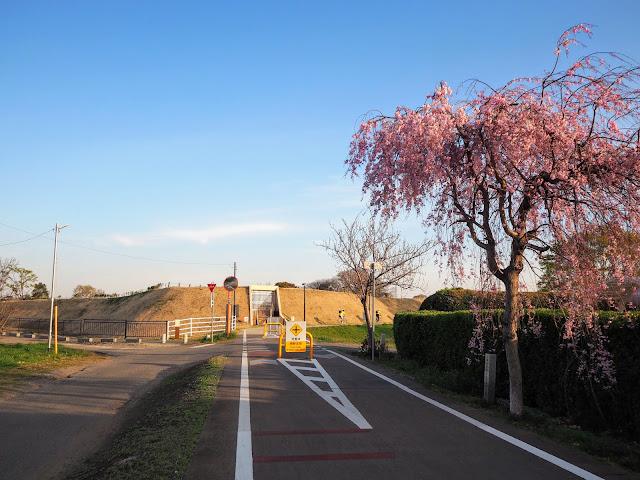 りんりんロード 小田城跡