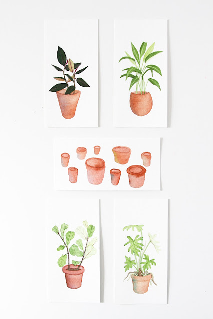 houseplant portraits, watercolor paintings, botanical watercolor, potted plants, clay pots, Anne Butera, My Giant Strawberry