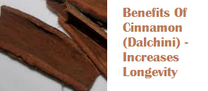 Benefits Of Cinnamon (Dalchini) -  Increases Longevity