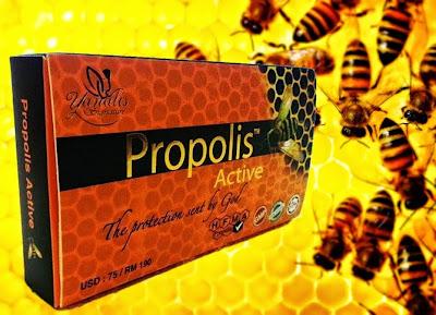 kandungan propolis, khasiat propolis, madu lebah, madu propolis, pembekal propolis,