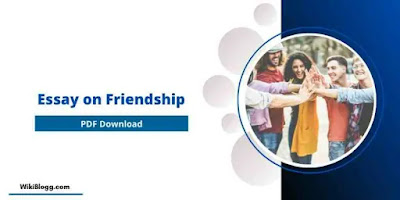 Essay on Friendship - Friendship Essay for students