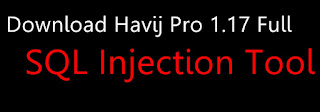 Link download Havij 1.17 Pro Cracked 2018