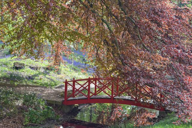 Himalayan Garden and Sculpture Park wooden bridge over stream