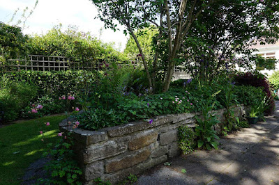 plants, flowers, raised bed,