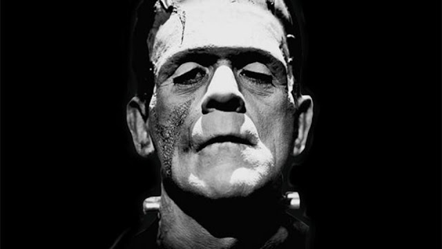 Frankenstein Novel Summary in Hindi - इंग्लिश नावेल हिंदी में
