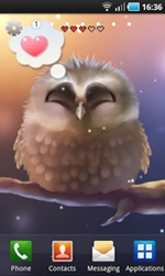Screen Shot Little Owl