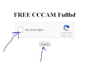 full hd cccam