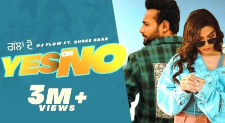 Yes Or No Lyrics - Dj Flow, Shree Brar - Download Video or MP3 Song