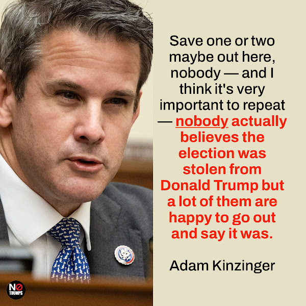 Save one or two maybe out here, nobody — and I think it's very important to repeat — nobody actually believes the election was stolen from Donald Trump but a lot of them are happy to go out and say it was. — Republican Rep. Adam Kinzinger of Illinois