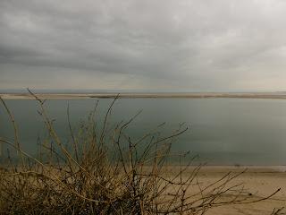 Le banc d'Arguin, vu de la dune du pilat 3, malooka