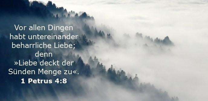 Vor allen Dingen habt untereinander beharrliche Liebe; denn »Liebe deckt der Sünden Menge zu«.