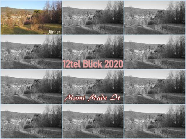 12tel Blick 2020 - Jänner