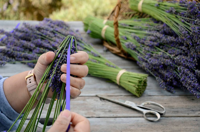 How to Weave Aromatic Lavender Wands with Pelindaba Lavender