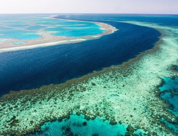 Grande Barreira de Coral perdeu um terço da área em um ano